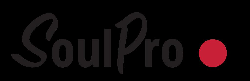 soulpro hankintatoiminnan johtamisjärjestelmä logo